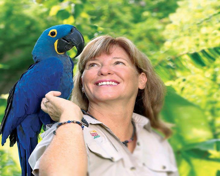 Bird Keeper and Parrot